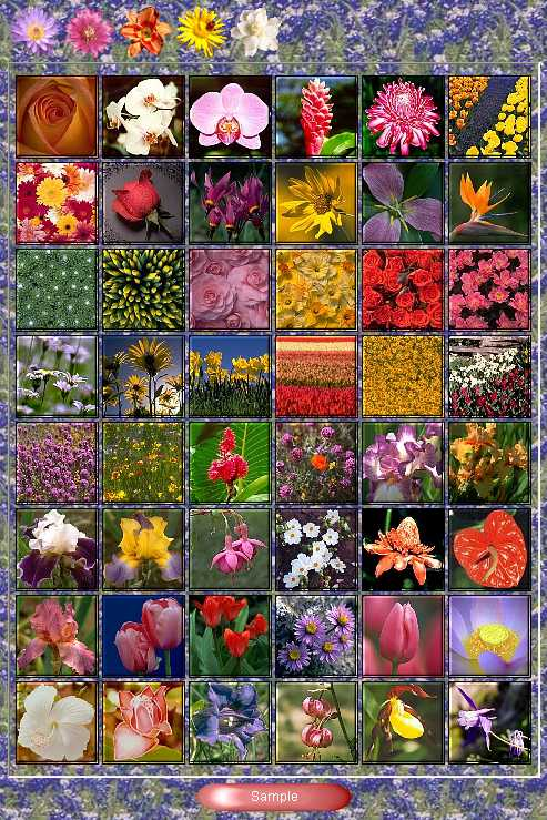 Preview half size for Flowers game addon